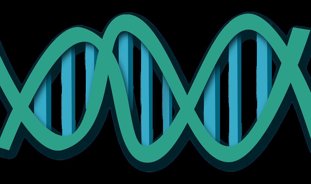 Modelado y simulación dinámica molecular: una herramienta para la industria